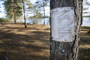 Inplastade informationslappar sitter uppsatta i skogen i närheten av Tönnebro.