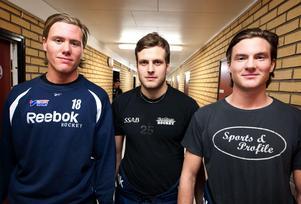 En bild på Borlänges Hockeys superkedja från 2013. Lars Eriksson, Marcus Andersson och Nils Eriksson.