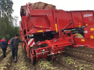 I Vansbro kommun skördar man mellan 50-60 procent av länets totala årsproduktion av potatis.