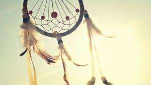Kanske lite visdom från Creeindianerna kan ge vägledning inför EU-valet, hoppas