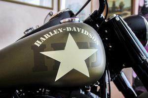 Magnus motorcykel är i färgen olive denim med en stor Harley-Davidson-stjärna på tanken.