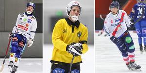 Johan Esplund, Magnus Fryklund och Simon Jansson är samtliga omnämnda i enkäten. Bilden är ett montage.