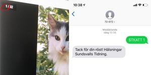 I det övre vänstra hörnet står kattens namn. SMS:a till STKATT mellanslag siffra till 72072.