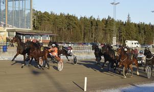 Västerbo Puma och Karin Nilsson vann amatöravdelningen. Foto: Christer Norin/ALN