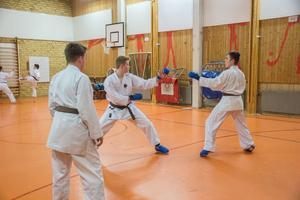 När man utövar karate individuellt så gäller det att följa ett visst mönster korrekt som tränaren har lärt ut.