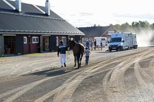 Efter den obligatoriska dopingkontrollen vandrade Hansen tillbaka med Millie Millionaire till stallbacken för en välförtjänt vila.