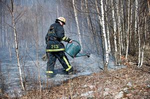 En av bränderna som brandkåren misstänker var anlagd var en gräsbrand.