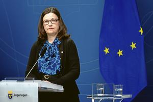 Utbildningsminister Anna Ekström (S) har bett OECD att granska Sveriges Pisaresultat ytterligare en gång. Men problemen som avslöjats gäller långt mer än ett missvisande resultat.