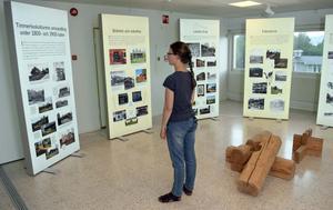 Utställningen består av skärmar med bilder och texter, men också av film och ett bildspel.