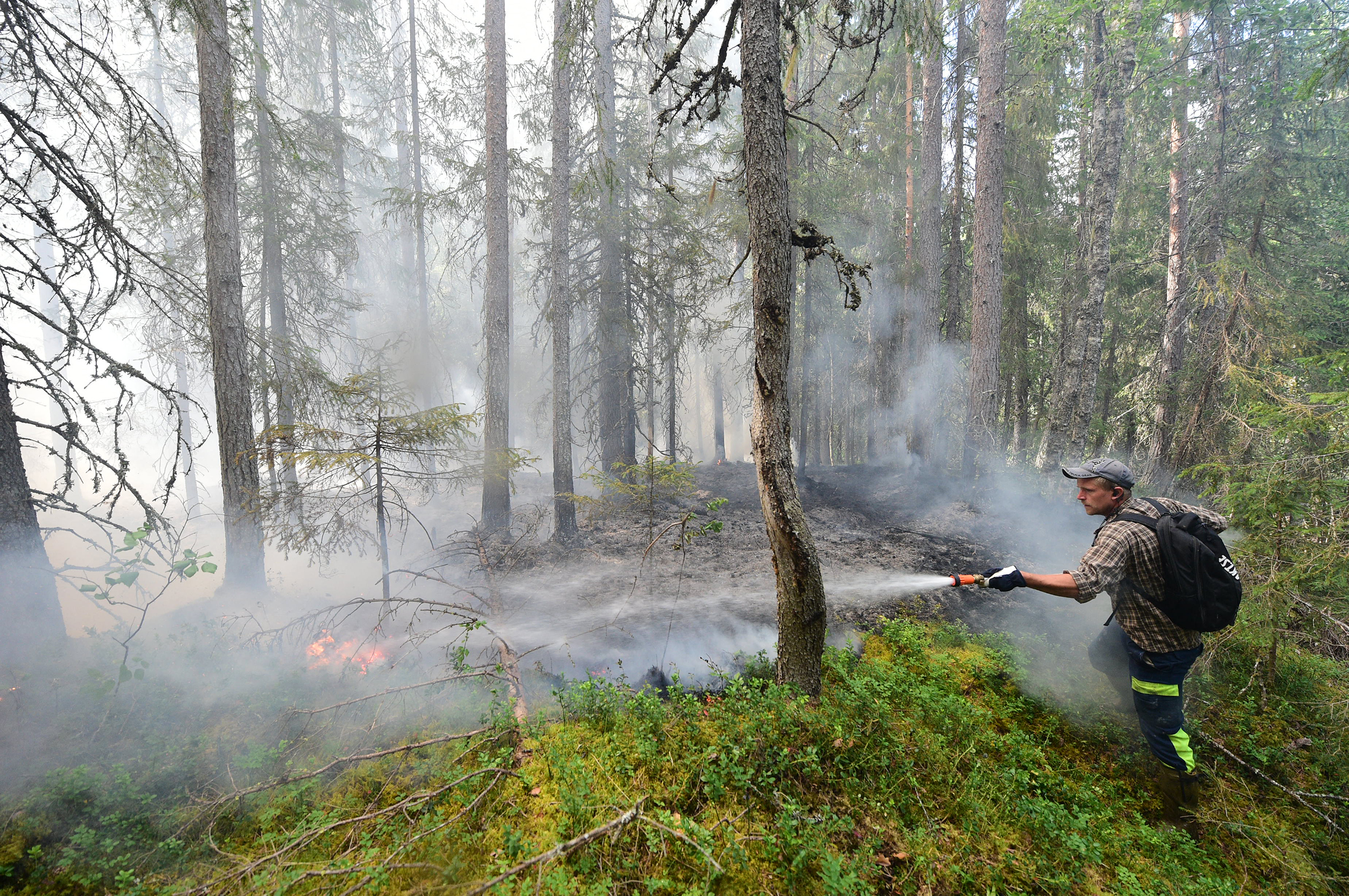 Skogsbranden dag for
