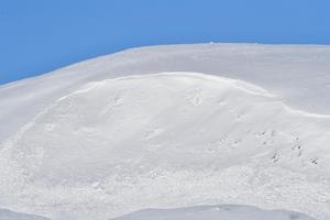 En lavin på Salsfjällen i Grövelsjön för två år sedan.
