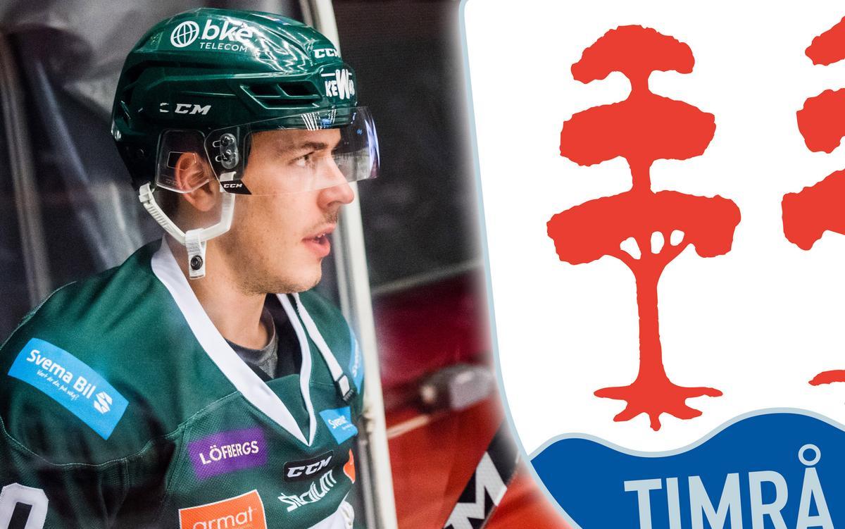 Rivalbacken Sebastian Erixons svar om en möjligt återkomst till Timrå IK: