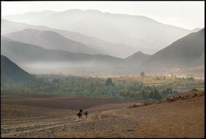 Norra Afghanistan. En man vandrar genom en dal nära Farqar med två fullpackade åsnor. Bilden är daterad Oktober, 2001.