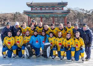 Laget som vann VM-guld i Kina 2018. Bild: Gert Holmér/Svenskbandy.se