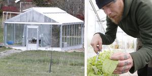 Väddö Hälsoträdgård rehabiliterar med odling i stressfri miljö.