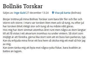 Skärmdump från Blocket.se