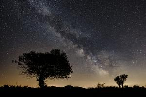 Vega är norra halvklotets näst ljusstarkaste stjärna. Förskolan Vega är också en lysande stjärna på kommunens förskolehimmel, skriver Yvonne Svensson och Johan Österberg. Foto: Peter Komka, TT.