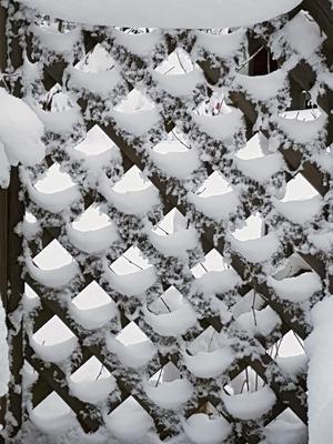 Vad är vad? Snö och is bildar tillsammans med spaljen nästan en synvilla. Bild: Britt Säväng
