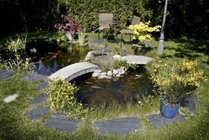 Så här vacker är Bosse Carlssons egna damm. Dammen har stått orörd hela vintern och våren.