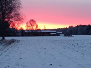 Vinterhimmel. Foto: Göran Greider.