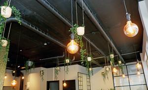 Från taket hänger lampor och växter i amplar.