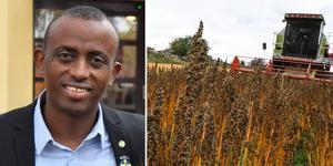 """""""Vi är helt beroende av robusta ekosystem, för rent vatten och hållbar odling, för att vår mat ska kunna växa"""" skriver Mursal Isa. (MP). Foto: Mats Laggar/TT/Montage"""