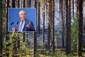 Landsbygdsminister Sven-Erik Bucht (S) meddelade på torsdagen att regeringen skjuter till 110 miljoner kronor i stöd till drabbade skogsägare efter sommarens stora bränder.