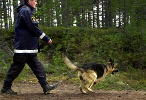 Arkivbild från sökandet 15 maj 2002. Bild: Mathias Lindqvist