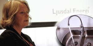 Vattenläckor i Ljusdals kommun kan ha orsakats av jordskalv, tror vd Lena Bergsten.
