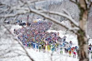 Vasaloppsstarten i Berga By.Foto: Ulf Palm/TT
