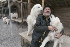 """Kramkalas i hundgården. Lotta och Lars får många besökare till kenneln, både av de som är intresserad av att köpa en hund eller bara vill titta. """"Vi är mån om att hundarna ska hamna rätt så vi vill träffa köparna först"""", säger Lars Jämtsved."""