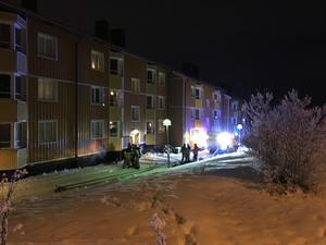 En brand hade av okänd anledning startat i ett förråd i källaren.