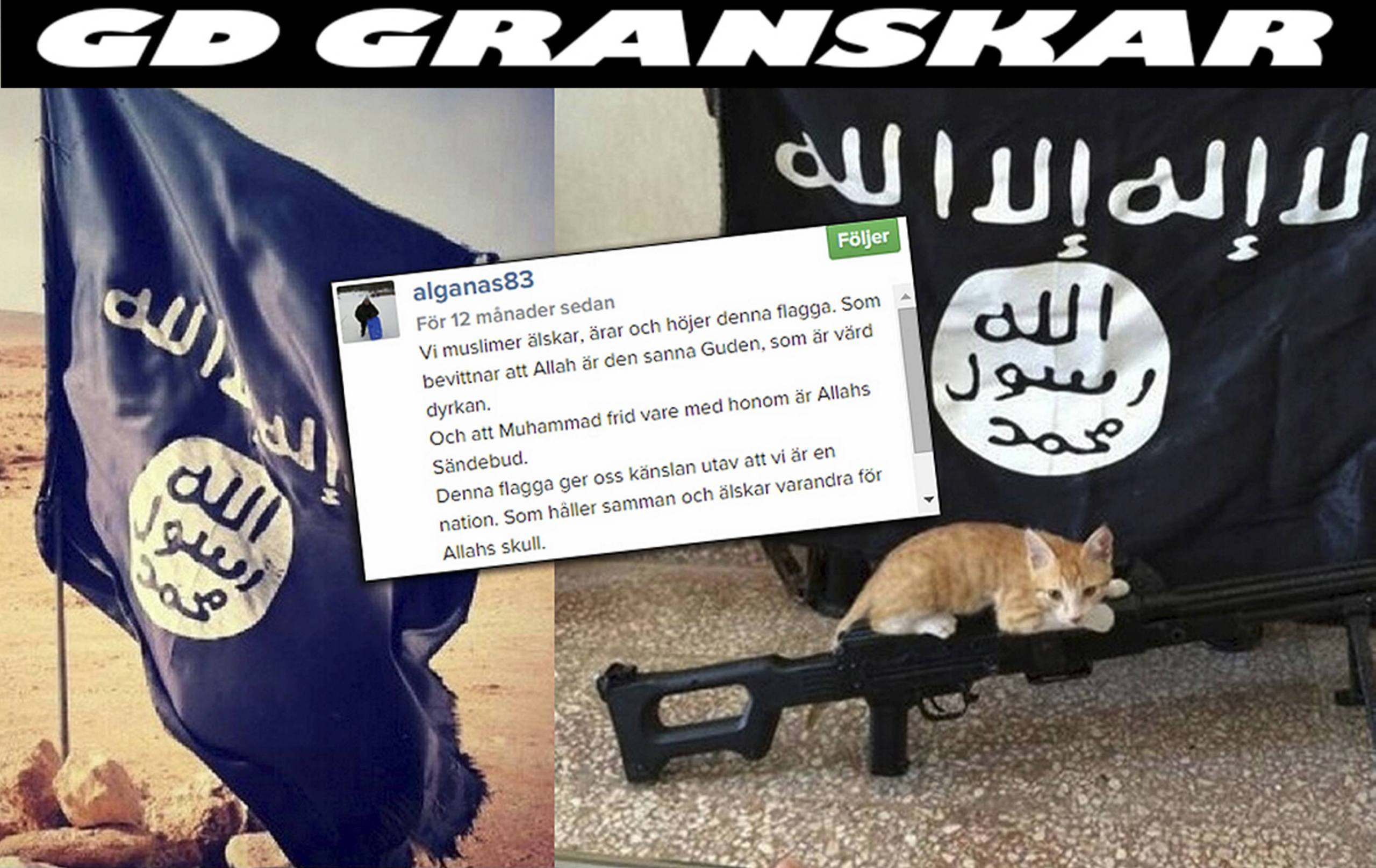 Experter dodshoten islamistisk propaganda