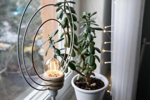 Belysning i fönstret skapar mysig stämning hemma under den mörka årstiden, men tänk på att det också begränsar din utsikt samtidigt som andra kan se in.