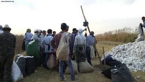 I Turkmenistan tvingas tiotusentals människor varje år till hårt arbete med bomullsskörden.
