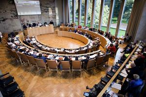 SD har åtta platser i kommunfullmäktige.