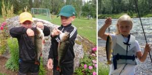 Barnen har varit flitiga i veckans fiskeliga.