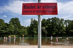 Badet iSvartån vid Hästhagen har varit stängt i många år. Foto:  Jonas Eriksson
