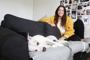 Elvira Muminovic drabbades av möss i lägenheten och anser att hon inte fått tillräckligt med hjälp av hyresvärden Hoforshus. Hunden Lady har hört mössen springa omkring i garderoben och i väggarna och reagerat på det.