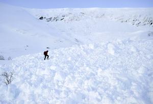 Lavinprognosers personal inspekterar en lavin som hade självutlöst på Mullfjället vintern 2017.