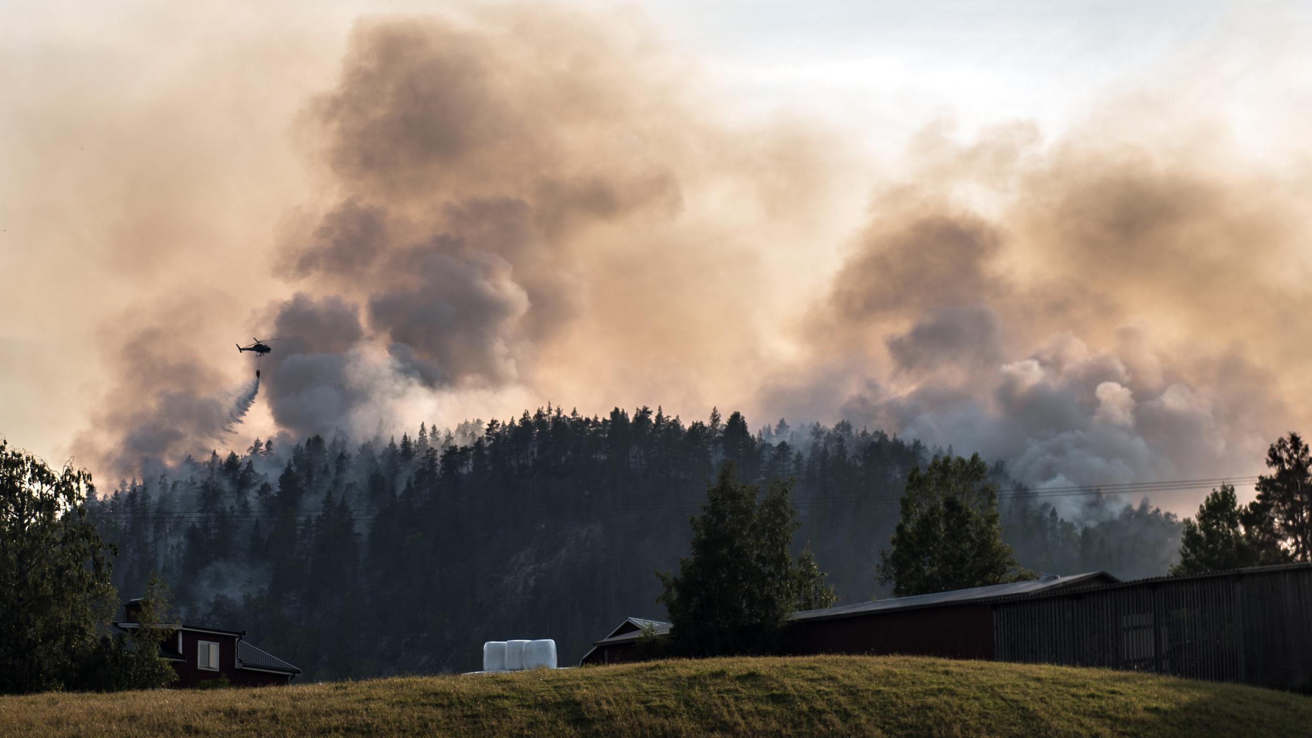 Skogsbrand i medelpad 2