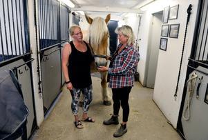 Jeanette Dyberg Vesterlund och Anita Åberg med hästen Trassel.