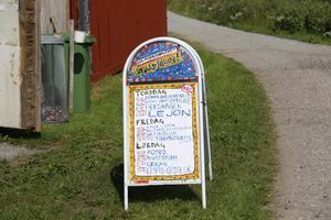 Tolv band spelar på årets Gussjölov festival.