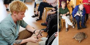 Pontus Hjelm hade med sig både ormar och en rejäl sköldpadda under besöket på Oxbackshemmet.