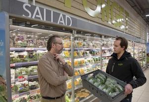 Micke Petersson och Christoffer Barath tror båda på inomhusodlade och närproducerade grönsaker.