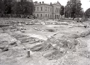 Dåvarande Landsantikvarien Sven Drakenberg ledde de arkeologiska undersökningarna inför byggandet av Stadshuset. Vid utgrävningen fann man över 2 000 individer i jorden. Skelettmaterialen ligger nu i en specialgjord krypta i Stadshuset. Foto: Länsmuseet