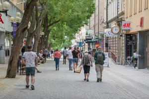 Stadens behov bestämmer villkoren även för landsbygden. På många sätt blir det en galet snedvriden konkurrens, skriver  Fil.dr. Urban Ekholm Laurin.
