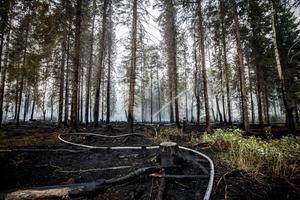 Bilder från branden i Tovåsen, som härjade på drygt 300 hektar skog.