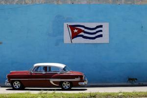 En stolt kuban. Foto:  Desmond Boylan