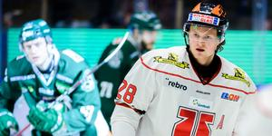 Linus Arnesson under en match mot Färjestad förra säsongen. Nästa säsong ser han ut att gå till just Färjestad. Bild: Fredrik Karlsson/Bildbyrån